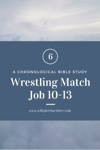 Link to a Bible Study Blog Post #6 - Wrestling Match