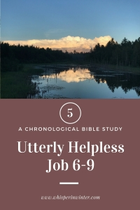 Link to a Bible Study Blog Post #5 - Utterly Helpless