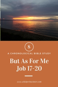 Link to a Bible Study Blog Post #8 - But As For Me
