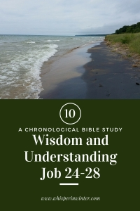 Link to a Bible Study Blog Post #10 - Wisdom and Understanding