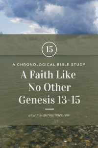 Link to a Bible Study Blog Post #15 - A Faith Like No Other