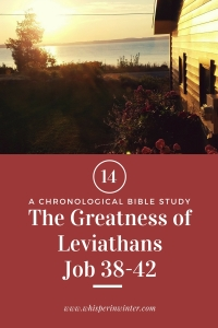 Link to a Bible Study Blog Post #14 - The Greatness of Leviathans