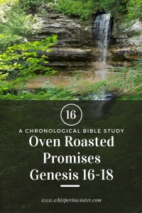 Link to a Bible Study Blog Post #16 - Oven Roasted Promises