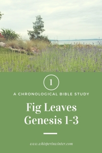 Link to a Bible Study Blog Post on Genesis 1-3