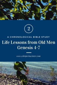 Link to a Bible Study Blog Post #2 - Life Lessons from Old Men