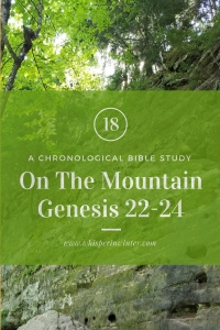 Link to a Bible Study Blog Post #18 - On the Mountain
