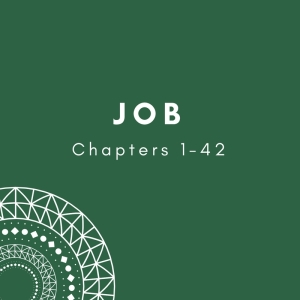 Link to Blog Posts on Job 1-42