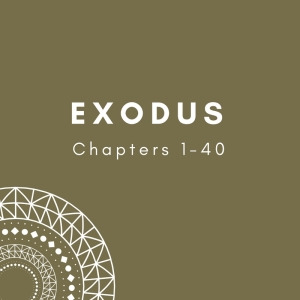 Link to Blog Posts on Exodus 1-40
