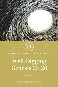 Link to a Bible Study Blog Post #19 - Well Digging