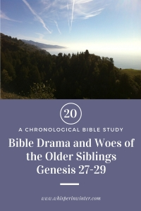 Link to a Bible Study Blog Post #20 - Bible Drama and the Woes of the Older Siblings