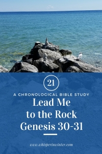 Link to a Bible Study Blog Post #21 - Lead Me to the Rock