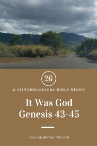 Link to a Bible Study Blog Post #26 - It Was God