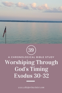 Link to a Bible Study Blog Post #39 - Worshiping Through God's Timing