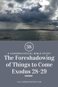 Link to a Bible Study Blog Post #38 - The Foreshadowing of Things to Come.