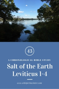 Link to a Bible Study Blog Post #43 - Salt of the Earth