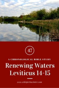 Link to a Bible Study Blog Post #47 - Renewing Waters