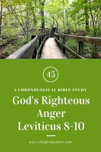 Link to a Bible Study Blog Post #45 - God's Righteous Anger